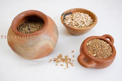Lentejones de El Mojón (izq.) y lentejas 'menúas' de Tahiche (detrás, chícharos)./ Y. M.