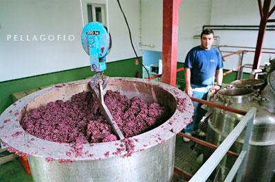Los restos de la uva prensada en bodega (el orujo), camino del alambique donde producirán aguardiente./ Y. M.