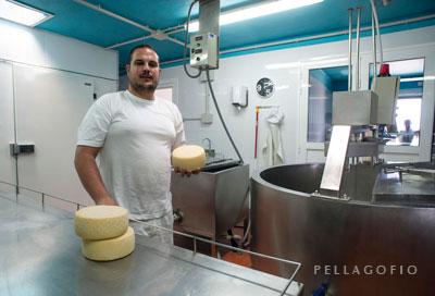 Miguel Arbelo hace los quesos de la quesería Filo El Cuchillo, mientras su padre se encarga del ganado y su ordeño.
