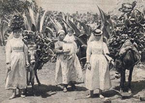 Vendedoras de leña de Tenerife a principios del siglo XX./ AFHC-FEDAC