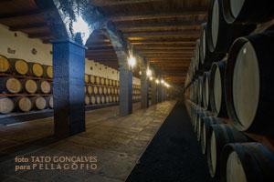 La antigua bodega guarda sus barricas en una nave bajo tierra./ FOTO TATO GONCALVES