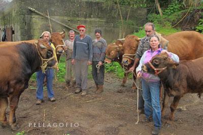 Finalizada la mudada y antes de entrar los animales en la cuadra de destino, todos se hacen una foto de familia.| FOTO Y. M.