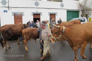 A medio camino hacen un alto para descansar unos minutos ante la tienda de Cirilo.| FOTO Y. M.