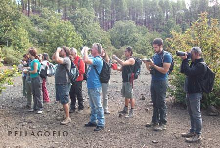 Curso de iniciación a la observación de aves. | COGC