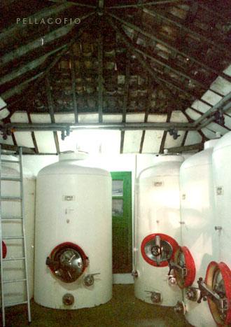 Depósitos en la antigua bodega, instalada en la casa de los abuelos. | FOTO YURI MILLARES