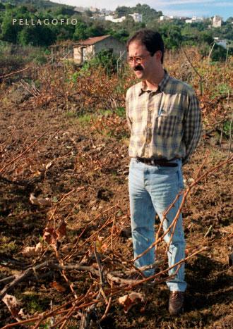 Juan Jesús Méndez entre su colección de varietales canarios en La Guancha, en el invierno de 1997.| FOTO Y. MILLARES