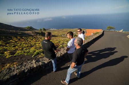 Los autores del libro visitan Llanos Negros, donde se cosecha la mejor uva malvasía de La Palma | foto TATO GONÇALVES