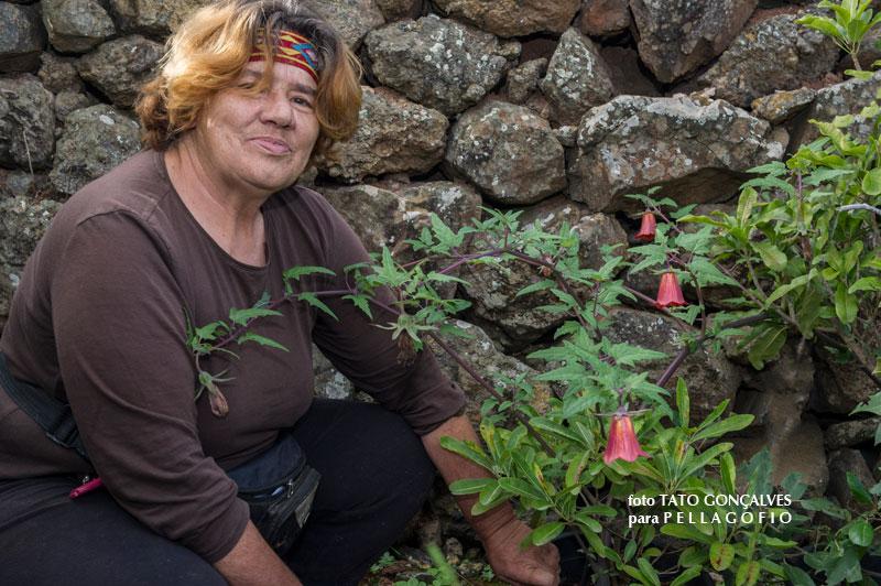 Isabel hidalgo viverista especializada en flora canaria for Viveros canarias