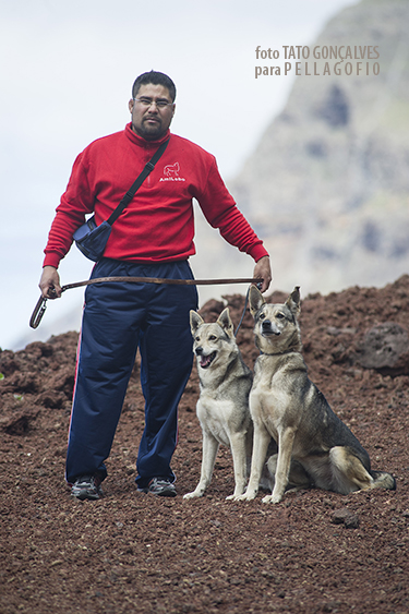 Pedro Cabrera, miembro de la Asociación Amilobo, con su pareja de lobitos herreños 'Tosca' y 'Silver'. | FOTO TATO GONÇALVES