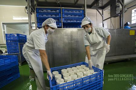 Dos operarias sumergen los quesos en la piscina de salmuera en la quesería El Guanche.| T. GONÇALVES