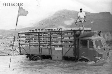 Camión cargado de tomates atrapado por las aguas que corren por el barranco de La Aldea, en el oeste de Gran Canaria. | FOTO ARCHIVO FEDEX
