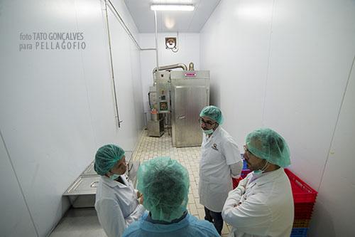 La nueva sala donde se ahúman algunos quesos con virutas de haya. | FOTO TATO GONÇALVES