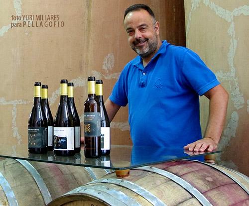 La colección de vinos Llanos Negros incluye un tinto, cuatro blancos y un malvasía naturalmente dulce.   FOTO Y. MILLARES
