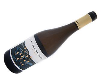 vinos-llanos-negros-teneguia-4516-6