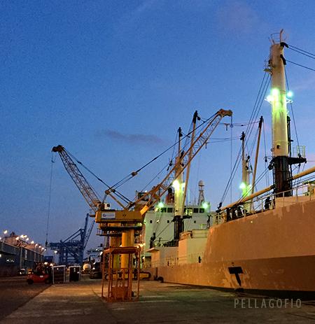El 'Nagato Keefer' cargando tomate en el puerto de La Luz y Las Palmas. | GUSTAVO RODRÍGUEZ