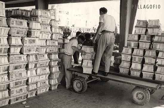 Años 60 del siglo XX. Estibadores con seretos de tomates en el puerto de La Luz y Las Palmas.| FOTO LARA (AFHC-FEDAC)