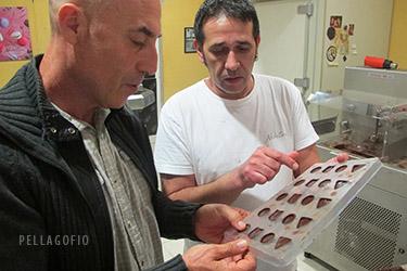El pastelero Aitor Neketan elaboró en exclusiva para las II Jornadas Pellagofio unos 500 bombones de chocolate con queso de flor de Guía de ovejas trashumantes, que le proporcionó el maestro quesero Isidoro Jiménez. | FOTO YURI MILLARES