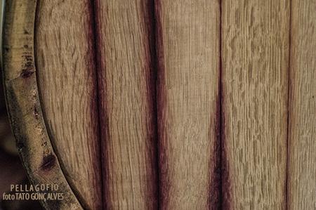 colores-del-vino-gran-canaria-4816-3