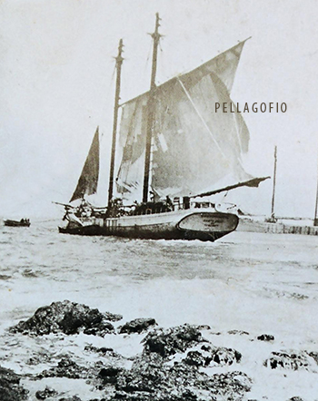 El 'Guanchinerfe', uno de los primeros barcos que llevó el tomate majorero.| FOTO ARCHIVO PELLAGOFIO
