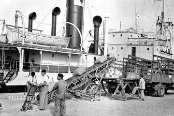 Obreros portuarios en la estiba de sacos de cereales en el puerto de La Luz.| ARCHIVO JULIO QUINTANA