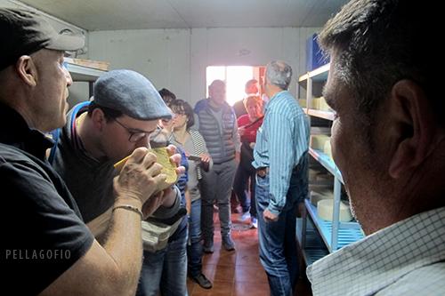 En la quesería del cortijo La Gloria, Isidoro Jiménez (izq) y el pastor José Miguel Ortega (dcha) muestran algunos quesos de la cámara de maduración. | FOTO YURI MILLARES