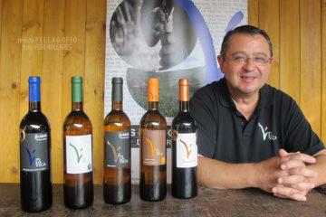 Luis Delfín Molina con la gama de vinos que produce, incluyendo el nuevo Desentidos (tintilla 6 meses en barrica), Mejor Vino Producción Limitada de Canarias. | FOTO Y. MILLARES