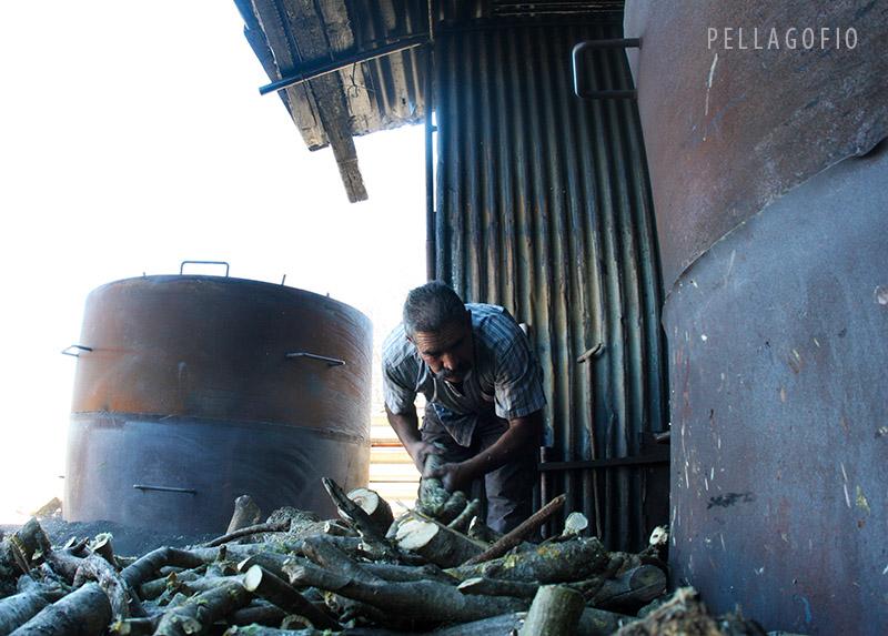 El carbonero Paco González coge leña entre las dos hoyas metálicas que tiene para fabricar carbón. | FOTO YURI MILLARES