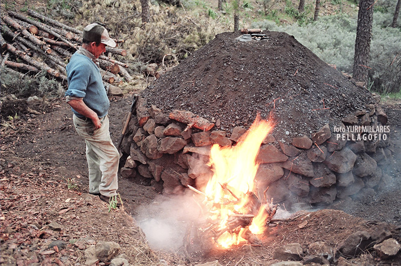 2. Amanece en el pinar y Juan Sarmiento prapara la hoguera para hacer las brasas que encenderán la hoya redonda o 'cubana'.   FOTO YURI MILLARES